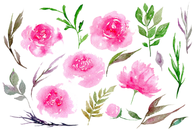 Peonies Clipart