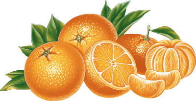 Orange Png Image Download