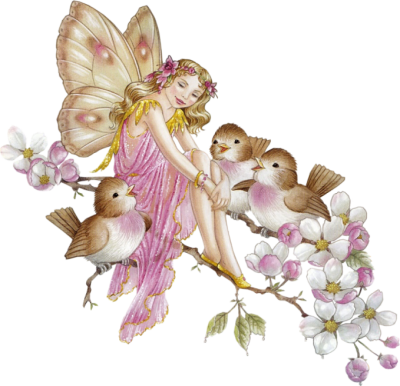 Fairy Transparent PNG