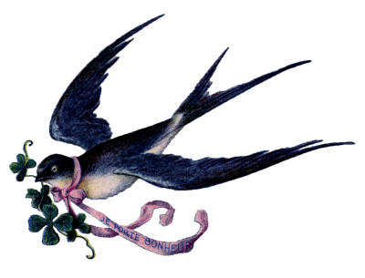 Fairy Bird PNG Free Download