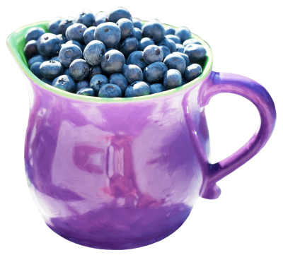 blueberry-in-mug