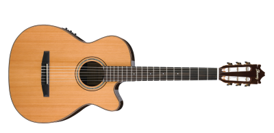 Guitar Png Picture