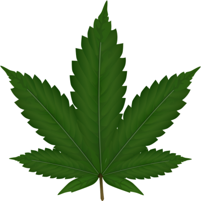 Cannabis-background-transparent