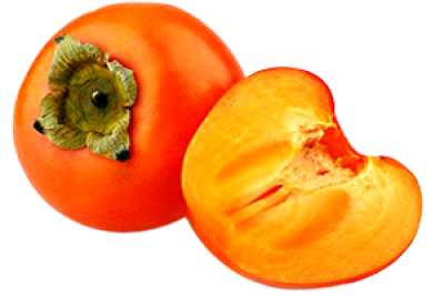 Persimmon Transparent