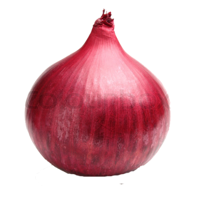 Red Onion File