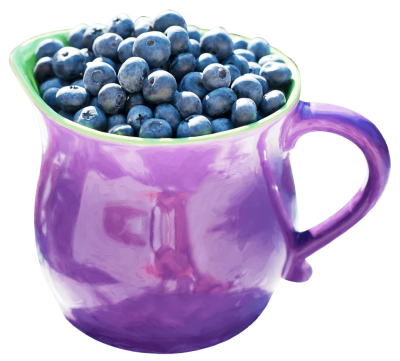 blueberries-in-jug