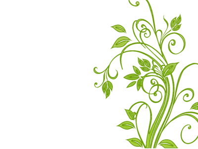 Floral, Flower, Leaf, Leafy, Leaves, Flower Vector Png   4778 ...