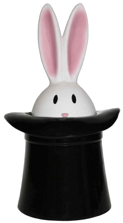 rabbit-hat-image