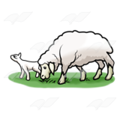 Abeka | Clip Art | Lamb and Adult Sheep—eating grass