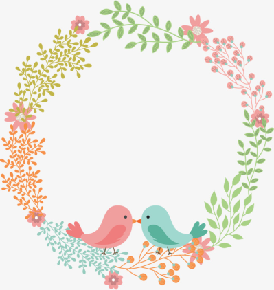 Love Birds PNG Images - DLPNG com