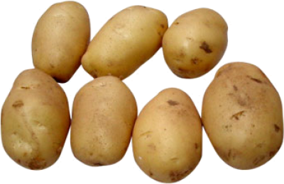 Potato-background-pictures-transparent