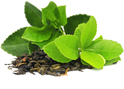 Green Tea PNG Transparent Image