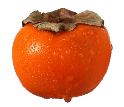 Persimmon-background-transparent
