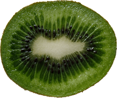 Green Cutted Kiwi Png Image