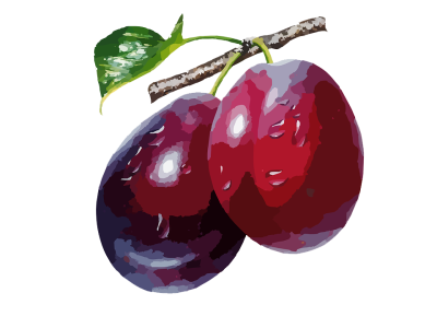 Plum High-Quality Png