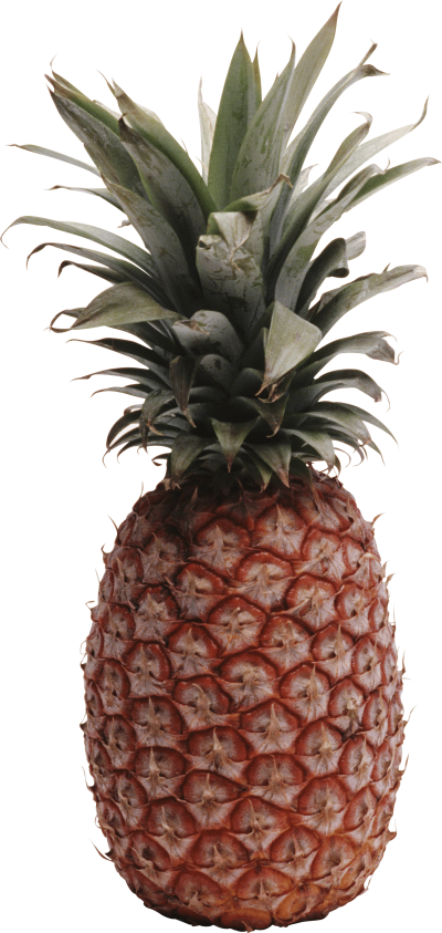 Pineapple Png Image Download
