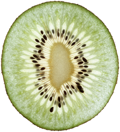 kiwi-fruit-background-pictures-transparent