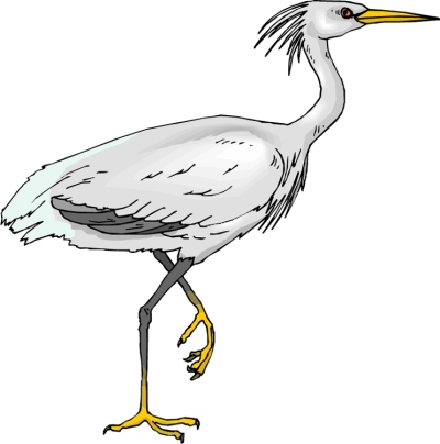 Heron PNG Transparent Picture
