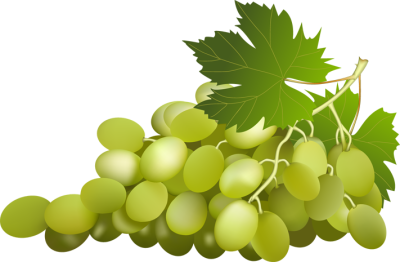 Grape Free Png Image