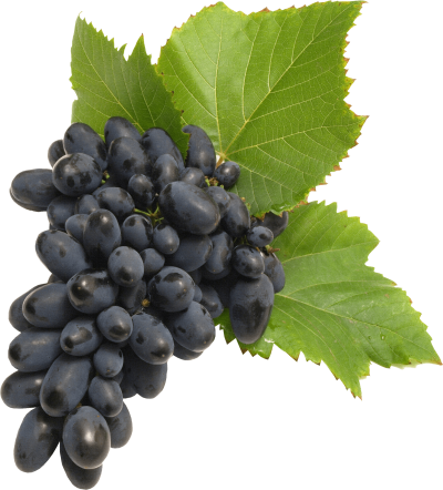 black-grapes