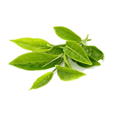 Green Tea Transparent PNG