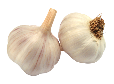 Garlic Transparent