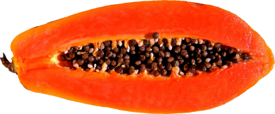Papaya Transparent