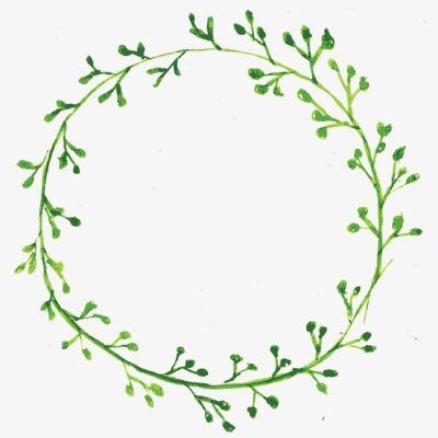 Wreath, Vine, Green PNG Image and Clipart for Free Download