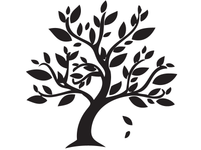 Png transparent library of a tree with leaves   RR collections