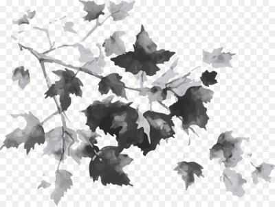 Maple leaf Tree Autumn Drawing   autumn leaves png download   1200 ...