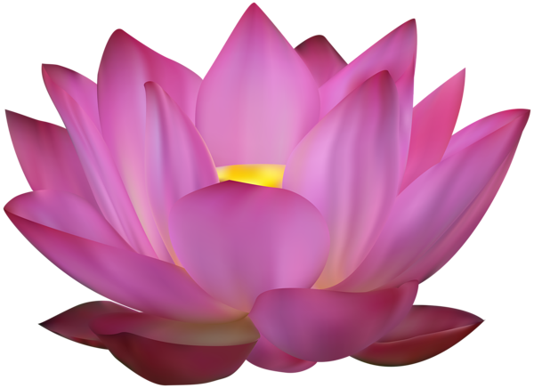 Download Free Png Lotus Flower Png Download Png Image With
