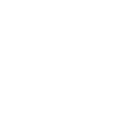 Free White Brain Icon   Download White Brain Icon