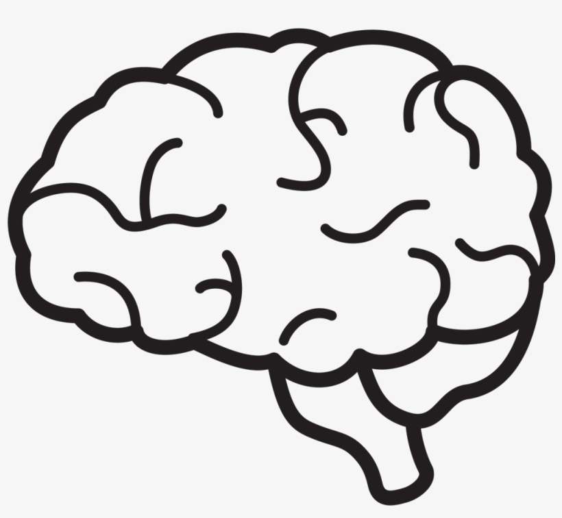 Brain Icon Png   Brain Clipart Black And White Png   Free ...