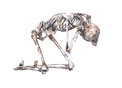 Free photo Png Pose Kneeling Skull Skeleton Bones 3d   Max Pixel