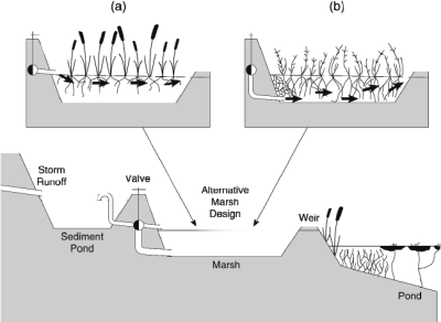 Design of constructed wetlands (a) free water surface (FWS ...