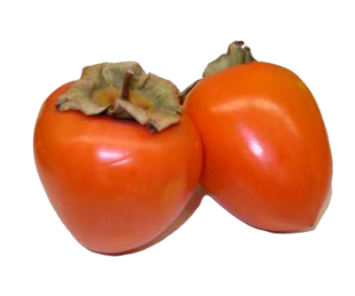 Persimmon Free Download Png