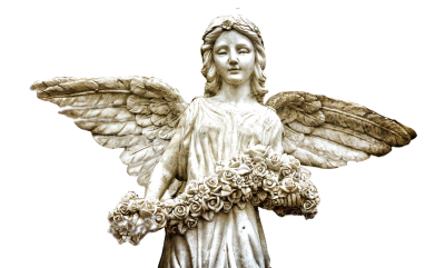 Angel Transparent