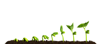 Grow Picture Free Transparent Image HD