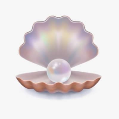 Clam Shell PNG, Transparent Clam Shell PNG Image Free Download ...