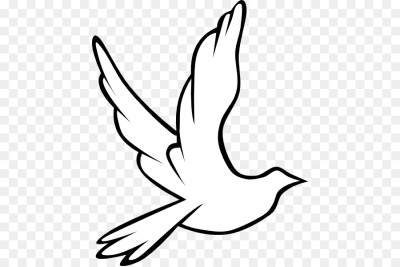 Columbidae Holy Spirit Doves as symbols Clip art   Wedding Dove ...
