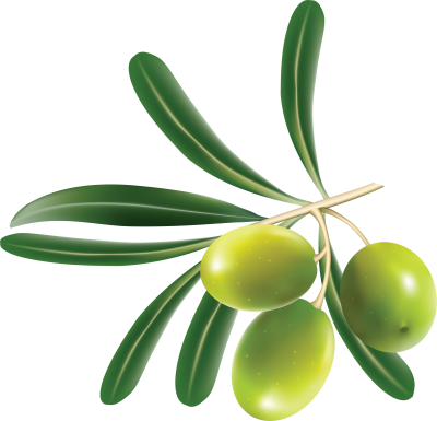 olives-background-Green-transparent