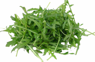 Arugula Leaves PNG