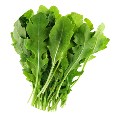 Arugula Leaves PNG Picture