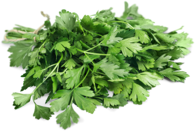 Arugula Leaves PNG Image