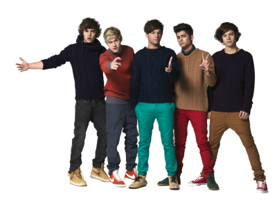 One Direction File