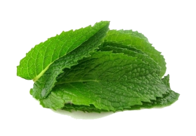 Mint Transparent Background