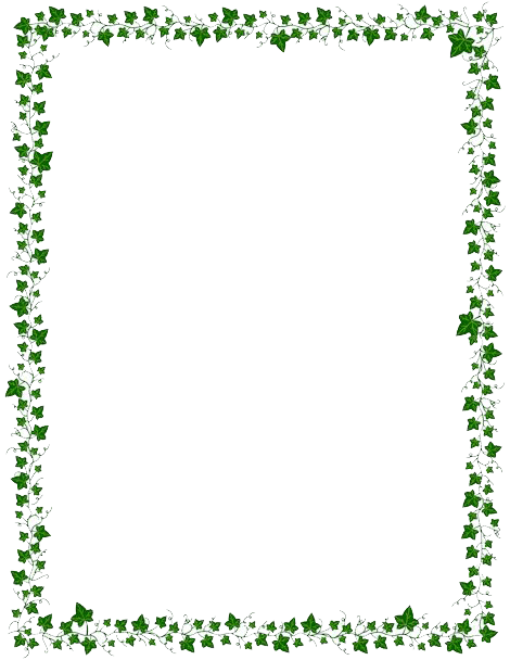 flowers-decorative-border