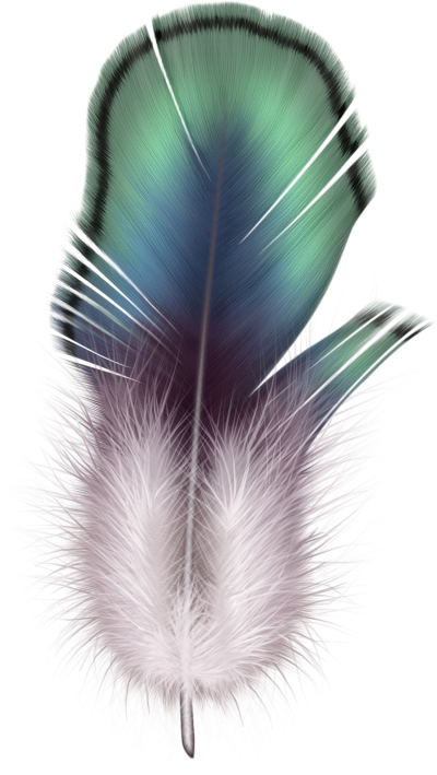 background-Feather-transparent