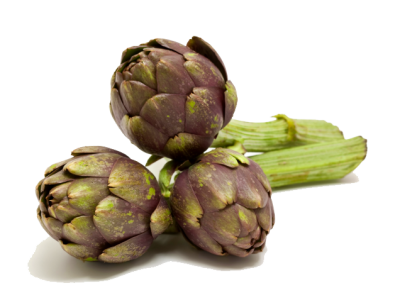 Artichokes Free Download