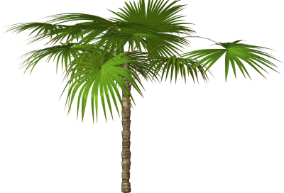 Jungle Tree Free Download